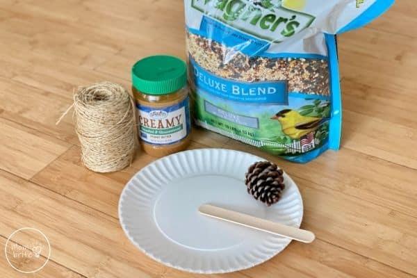 Pinecone Bird Feeder Supplies