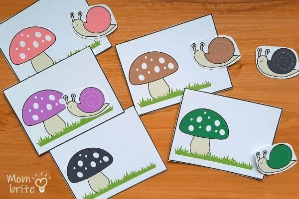 Snail Color Matching Activity for Toddlers