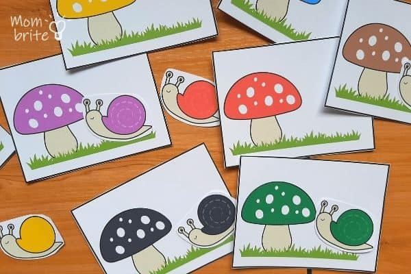 Snail Color Matching Activity