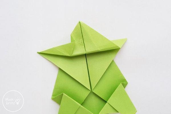 Origami Turtle Step 11