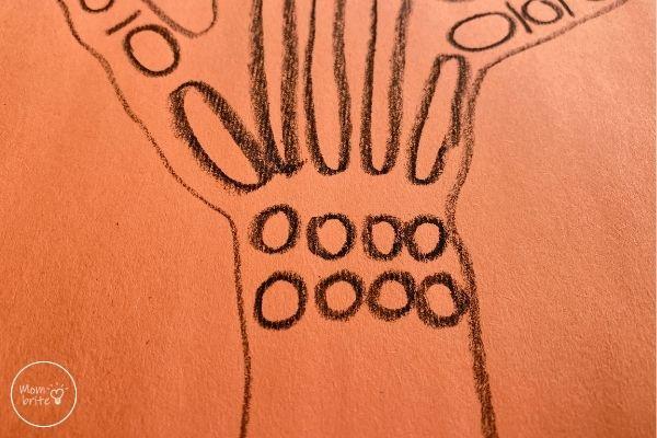 X-Ray Craft Draw Carpal Bones